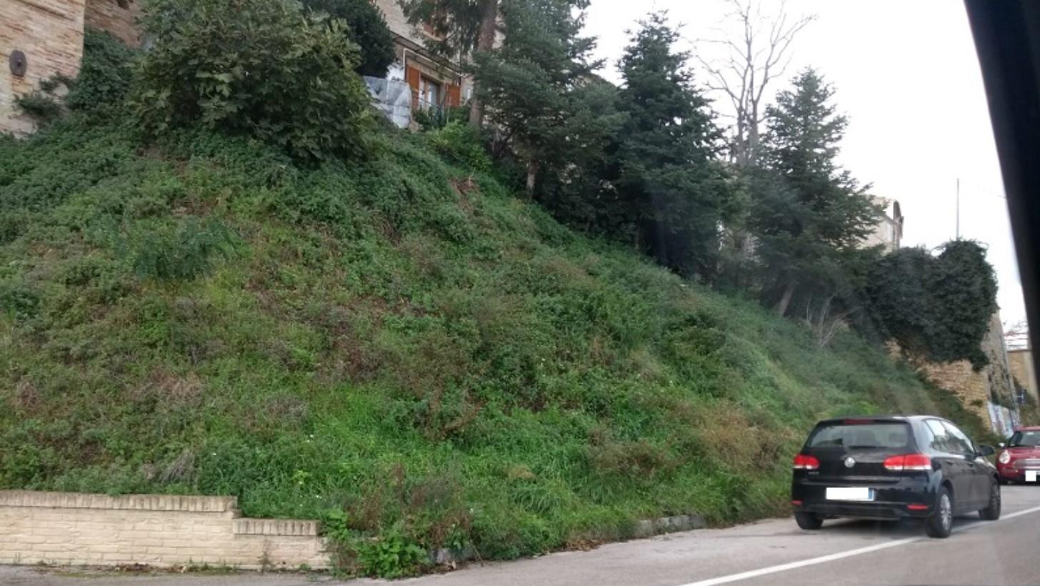 """Monte San Pietrangeli: """"Non mi piace la trascuratezza di certe aree"""" Il senso civico di un cittadino arrabbiato - Vivere Fermo"""